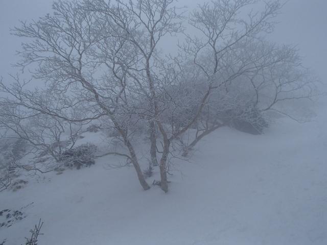 2.6吹雪いてきた.JPG