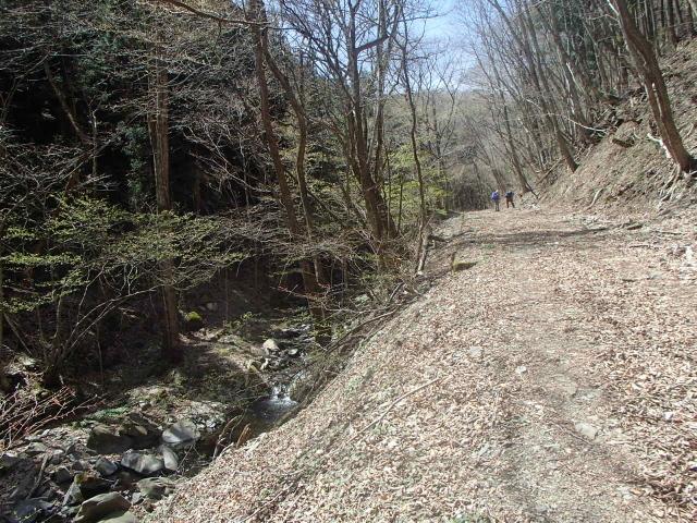 4.3林道を登る.JPG